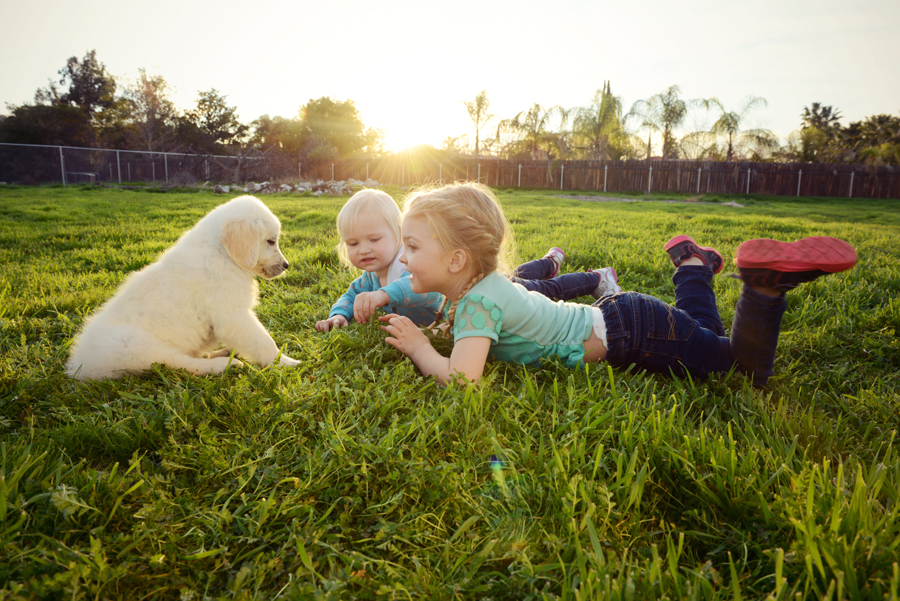 Cousins with a puppy